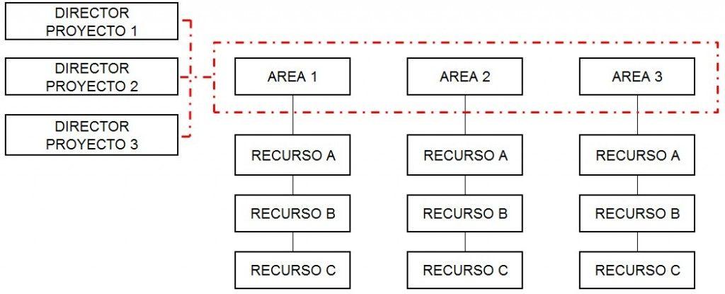 La organización de proyectos según el tipo de empresa - funcional
